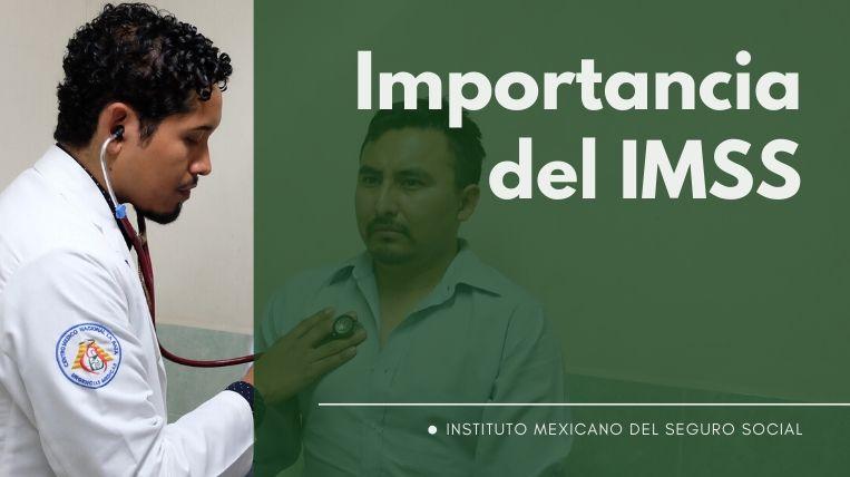 Importancia del IMSS