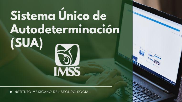 Cómo descargar el SUA del IMSS en línea